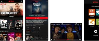 Netflix что это за программа?